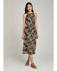 Apricot Chiffonkleid »Tropical Palm Tie Neck Midi Dress« mit amerikanischem Ausschnitt - Grün