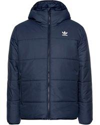 adidas Originals Winterjacke »JACKET PADDED« - Blau