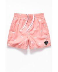 "Maui & Sons Savage Shark 17"" Swim Trunks - Pink"