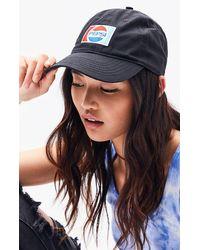 Bioworld Pepsi Dad Hat - Black