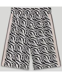 Palm Angels Zebra Track Shorts - ブラック