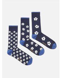 Universal Works 3 Pack Flower Sock Navy - White