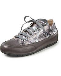 Candice Cooper Sneaker rock - Grau