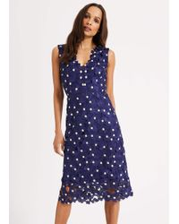 Phase Eight Fran Lace Dress - Blue