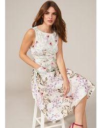 Phase Eight Wilhemina Cotton Fit & Flare Dress - White