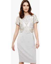 Phase Eight - Suki Lace Dress - Lyst
