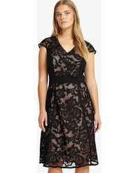 Phase Eight - Cleo Lace Dress - Lyst