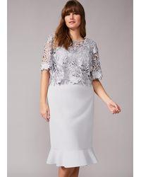 Studio 8 Perla Lace Dress - Grey