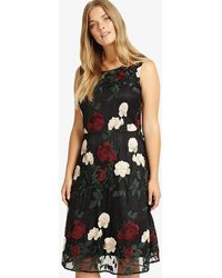 Studio 8 - Lizzy Embroidered Dress - Lyst