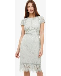 Phase Eight - Eloise Lace Dress - Lyst