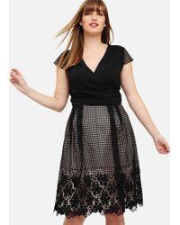 Studio 8 Romola Dress - Black