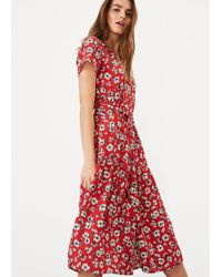 Phase Eight Daisy Floral Dress - Red