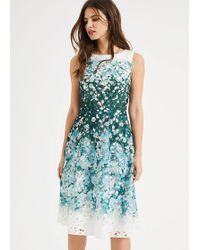 Phase Eight Angela Lace Detail Dress - Green