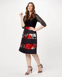 Phase Eight - Agnese Skirt - Lyst