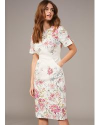 Phase Eight Marie Floral Print Knee Length Dress - White