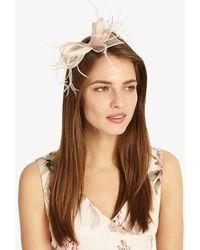 Phase Eight - Bethany Large Bow Hairclip - Lyst