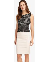 Phase Eight - Hannah Lace Dress - Lyst