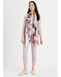 Phase Eight Hatty Crop Trousers - Grey