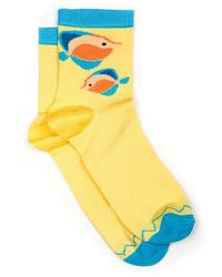 Pikolinos Trainer Socks - Blue