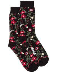 Pikolinos Sock - Black