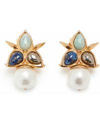 Isharya Earrings - Multicolour