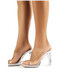 4f67b7620a6 Honey Nude Faux Suede Perspex Block Heeled Mules - Natural