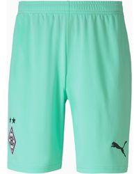 PUMA Shorts de Fútbol Réplica de La 3.a Equipación Del Borussia Mönchengladbach - Verde