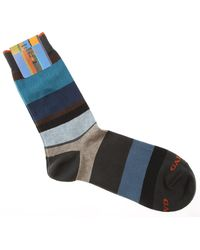 Gallo Socks For Men - Blue