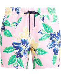 Polo Ralph Lauren 41⁄2-inch Slim Fit Swim Trunk - Multicolor