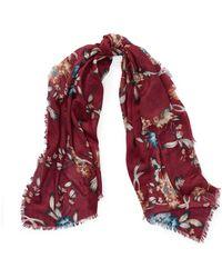 Ralph Lauren - Floral Wool-silk Scarf - Lyst
