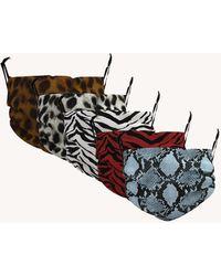 Rebecca Minkoff Animal Printed Masks, Set Of 5 - Multicolor