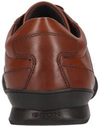 Geox Sneaker Leder mittel - Braun