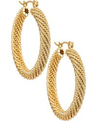 Natalie B. Jewelry Серьги-кольца Tuli В Цвете Золотой - Металлик