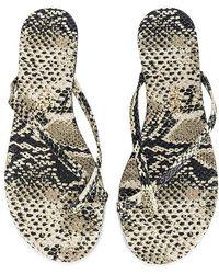 TKEES Riley Exotic Flip Flop - Grey