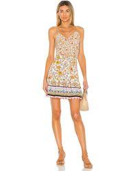 Maaji Florentina Dress - Multicolour