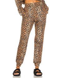 Lovers + Friends Джоггеры Cropped В Цвете Chocolate Leopard - Коричневый