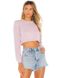 MAJORELLE Petunia セーター - マルチカラー