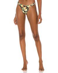 ViX Riviera Bikini Bottom - Brown