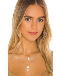 Amber Sceats Ожерелье В Цвете Золотой - Металлик