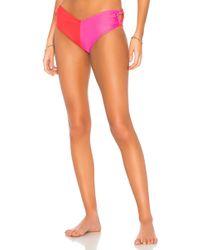 Paper London - Florentine Bikini Bottom In Fuchsia - Lyst