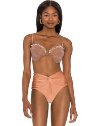 PATBO Seashell Beaded Bikini Top - Brown