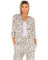 Sundry Leopard パーカー - マルチカラー