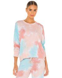 Sundry スウェットシャツ - マルチカラー