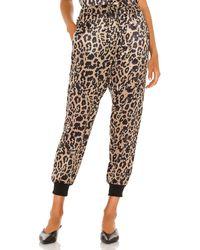 LNA Leopard Drawstring Pant - Multicolour