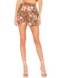 MAJORELLE Hunter Shorts - Multicolor