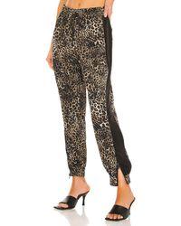 Pam & Gela Leopard Windbreaker Pant - Braun
