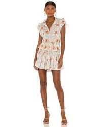 MISA Los Angles Lilian Dress - Multicolour