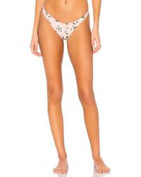 Amuse Society - Lavender High Hip In Pink - Lyst