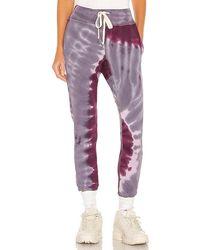 NSF Sayde Sweatpant - Purple