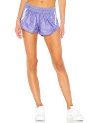 adidas By Stella McCartney Run Adizero Shorts Dt9248 - Purple